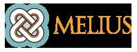 entidades-socias-Melius-IT